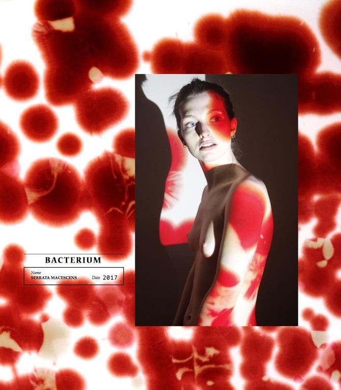 Laure Fernandez, Kering Award, Sustainable Fashion, Future Artisans,